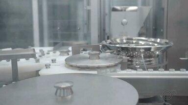 Governo de SP anuncia início da produção da vacina Coronavac pelo Butantan - O governo de São Paulo informou nesta quinta-feira (10) que o Instituto Butantan iniciou o envase da Coronavac, vacina contra a Covid-19 produzida em parceria com o laboratório chinês Sinovac. O processo consiste na etapa final de produção da vacina.