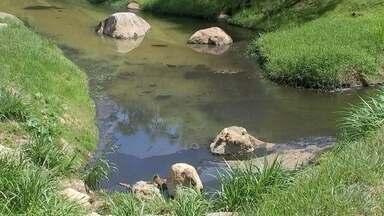 Saae identifica local onde foi descartado o produto químico que poluiu o lago do Campolim - Uma equipe do Serviço Autônomo de Água e Esgoto de Sorocaba (Saae) identificou na tarde desta quinta-feira (10), o local onde foi feito o descarte do produto químico que poluiu o lago do Parque Campolim, em Sorocaba (SP).