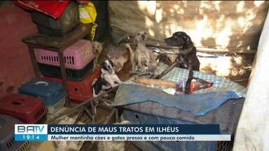 Cachorros e gatos são resgatados de situação de maus tratos em Ilhéus, sul da Bahia - Mulher deixava os animais presos e com pouca comida.