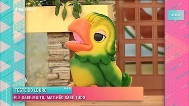 Divirta-se com a alegria de Louro José - Relembre as tiradas engraçadas do papagaio de Ana Maria Braga