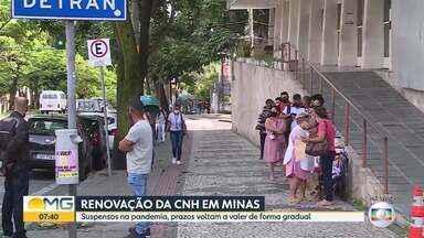 Prazos de renovação de CNH em Minas, suspensos na pandemia, voltam a valer - O processo será feito de forma gradual, segundo a Polícia Civil.