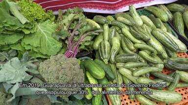 Esperança que floresce nos campos de Guarapuava - Esperança que floresce nos campos de Guarapuava