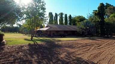 Fazendas do noroeste paulista são cheias de histórias para contar - A apenas sete quilômetros do centro de São José do Rio Preto, a maior cidade do noroeste paulista, está uma das fazendas mais bonitas do interior do estado.
