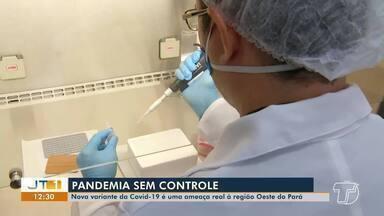 Nova variante da Covid-19 é uma ameaça real à região oeste do Pará - Variante já está circulando na região.