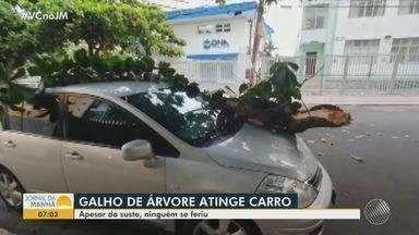 Galho de árvore cai e atinge carro estacionado, no bairro da Pituba; ninguém se feriu - Acidente aconteceu na tarde de quarta-feira (3).