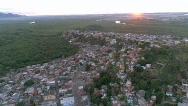 Em Movimento: Lameirão é um dos maiores manguezais urbanos da América Latina - Os 890 hectares do mangue garantem a manutenção da vida marinha e a cultura gastronômica do estado