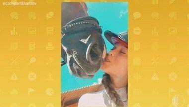 'Que Pet é Esse?: conheça o cavalo Excalibur SH - Confira!!