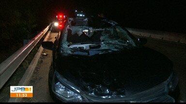 Carro bate em cavalo e duas pessoas ficam feridas, na BR-101, em João Pessoa - No interior do veículo havia um casal que foi encaminhado para um hospital da capital