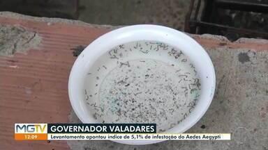 LIRAa aponta índice de infestação de 5,1% em Governador Valadares - Resultado foi divulgado nessa sexta-feira (5).