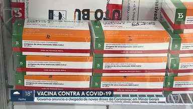 Governo de Minas anuncia que novas doses da Coronavac chegam amanhã ao estado - Minas Gerais recebe neste domingo 315.600 doses de vacinas Sinovac/Butantan para a quarta etapa da primeira fase da Campanha Nacional de Vacinação contra a covid-19 no estado. Pessoas com 90 anos ou mais serão as próximas vacinadas no estado, de acordo com as diretrizes do Programa Nacional de Imunização (PNI), do Ministério da Saúde (MS).