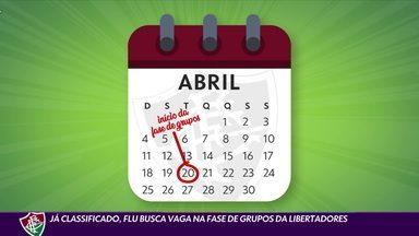 Já classificado para a Libertadores, Fluminense mira G-4 e quer vaga direto na fase de grupos - Já classificado para a Libertadores, Fluminense mira G-4 e quer vaga direto na fase de grupos