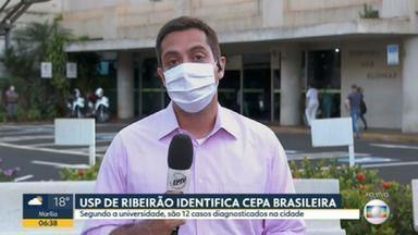 USP de Ribeirão identifica 12 casos da variante brasileira na cidade - Secretaria estadual da Saúde ainda investiga esses casos.