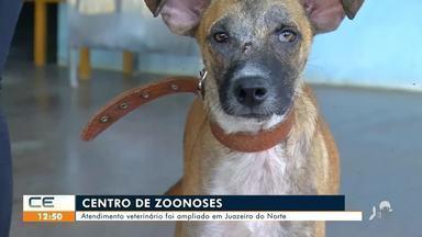 Atendimento veterinário é ampliado em Juazeiro do Norte - Saiba mais em g1.com.br/ce