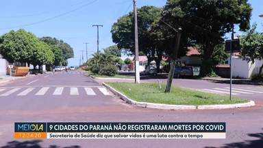 Nove cidades do Paraná não registraram mortes por Covid-19 - Total de óbitos no estado é de 12.954.