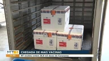 Mato Grosso recebe mais de 28 mil doses da coronavac - Mato Grosso recebe mais de 28 mil doses da coronavac.