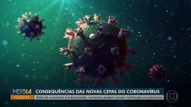 Paraná registra mais de 15 mil mortes por coronavírus em um ano de Pandemia - Aumento no número de casos de Covid-19 pode estar relacionado ao surgimento das variantes do vírus.