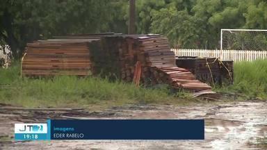 Doação de madeira apreendida requer critérios e documentação; veja - Veja como ocorre a destinação da madeira apreendida em ações policiais.