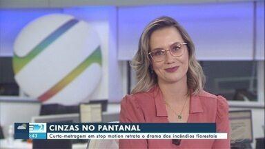MSTV 2ª Edição Campo Grande - sábado - 01/05/2021 - MSTV 2ª Edição Campo Grande - sábado - 01/05/2021