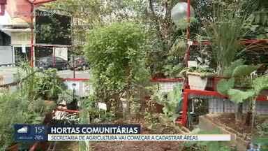 Hortas comunitárias ganham força em áreas urbanas do DF - Secretaria de Agricultura vai começar a cadastrar esses espaços e auxiliar na manutenção das hortas.