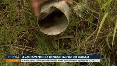 Levantamento vai apontar a situação da Dengue em Foz do Iguaçu - Cidade tem 337 casos confirmados e três mortes desde agosto de 2020.