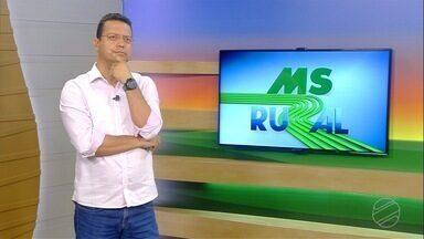Governo do MS decreta estado de emergência em todas as regiões do Pantanal - MSR