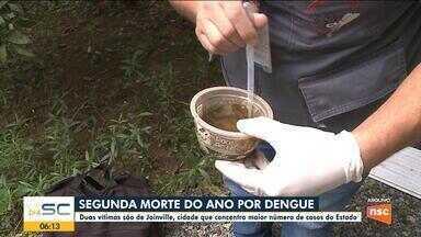 Segunda morte por dengue em Joinville é confirmada - Segunda morte por dengue em Joinville é confirmada