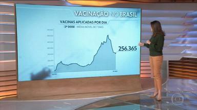 Brasil registra a pior média de aplicação da segunda dose contra a Covid-19 em um mês - A média de pessoas que receberam o reforço da imunização está em 256 mil. O número vem caindo desde o começo de maio.