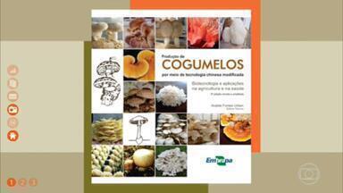 Aprenda a plantar cogumelo - Cartilha da Embrapa dá dicas para quem quer começar este cultivo.