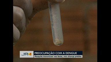 Dengue: Preocupação deve ser constante - Mosquito transmissor voa baixo, mas alcança prédios