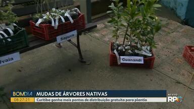 Prefeitura de Curitiba amplia pontos de distribuição de mudas gratuitas - As dez administrações regionais da cidade terão exemplares de árvores nativas para distribuição.