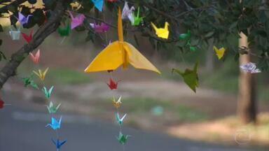 Colônia japonesa de Maringá, no Paraná, espalha energia positiva com a arte milenar do origami - As dobraduras de papel reproduzindo garças, segundo a tradição, representam saúde e longevidade em tempos de pandemia.