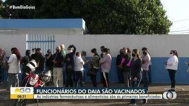 Funcionários do Daia são vacinados em Anápolis - As indústrias farmacêuticas e alimentícias são as primeiras beneficiadas.