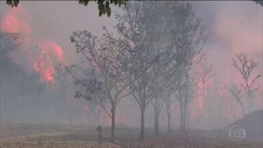 Incêndio de grandes proporções atinge o Parque Nacional das Emas - O fogo consome o parque, na divisa de Goiás com Mato Grosso do Sul, há cinco dias. Tudo começou quando a equipe do parque fazia aceiros, que é o método preventivo de atear fogo controlado na vegetação. As chamas se espalharam e a situação saiu de controle.