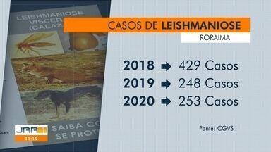 Roraima registra redução nos casos de leishmaniose - Apesar da queda no número de casos, especialistas alertam sobre os riscos da doença.