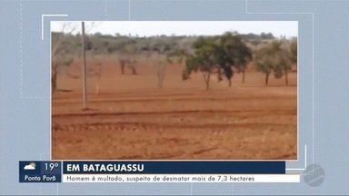Homem é multado suspeito de desmatar mais de 7,3 hectares - MS1