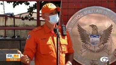 Corpo de Bombeiros orienta sobre contato com cobras e outros animais peçonhentos - Duas cobras foram capturadas em uma semana em Alagoas.