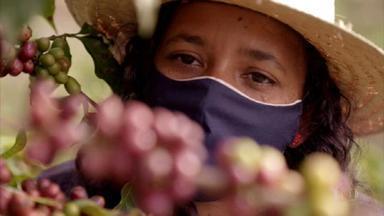 Agricultora se arrisca na produção de cafés especiais e conquista prêmios - Luciene Mota sempre colheu café para os outros. Até que, seis anos atrás, nasceu o Café da Luci. 'O café trouxe muito mais qualidade de vida para nós', afirma Luciene.