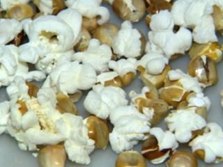Agrônomo compara o milho comum com o grão usado para fazer pipoca