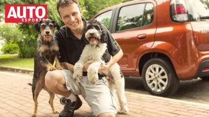 Vídeo: Dr. Pet, Estopinha e Barthô ensinam como transportar seu animal no carro