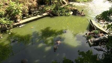 Recuperação do Canal das Tachas, no Recreio, já está em andamento, diz prefeitura
