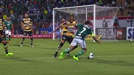 Melhores momentos de Palmeiras 3 x 0 Novorizontino pelo Campeonato Paulista