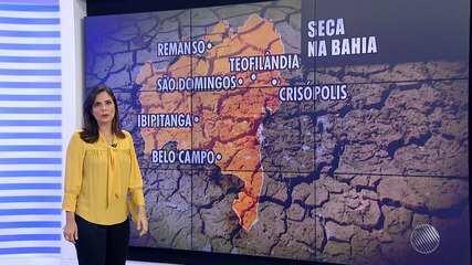 Seca deixa mais seis cidades baianas em situação de emergência