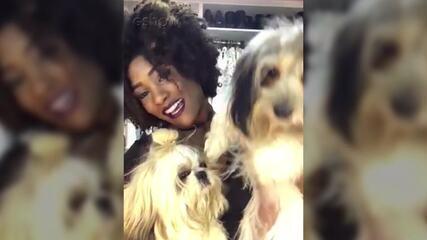 Amor de Bicho: Erika Januza apresenta a Preta e o Uili, seus cães de estimação