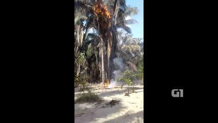 Incêndio atingiu comunidade quilombola em ilha no rio Araguaia