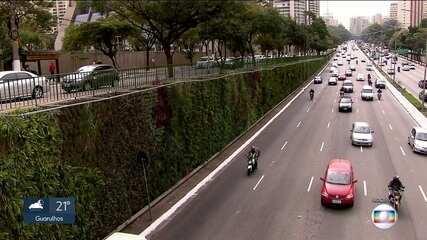 MP quer proibir a prefeitura de usar jardins verticais como forma de compensação ambiental