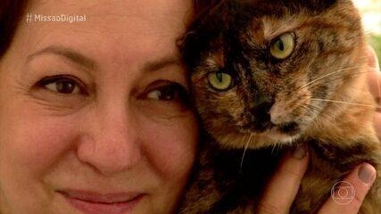 Missão Digital: Conheça a história do projeto 'Pegada de Gato'