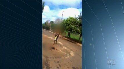 Vídeo mostra homem matando cachorro a paulada em rua de Palminópolis
