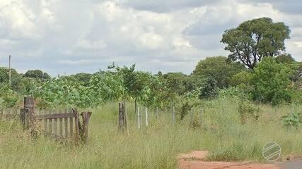 Prefeitura aplica multa e penhora bens de dono de terreno sujo em Campo Grande
