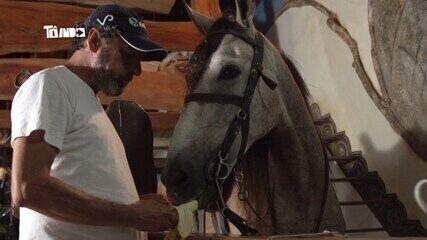 Reveja: Mário conhece cavalo criado dentro de casa em Ubá