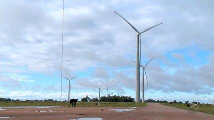 Energia eólica é fonte de renda extra para famílias de Santa Vitória do Palmar